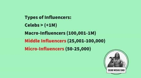 thextraordinarionly types of influencers by Dear Mishu Dad